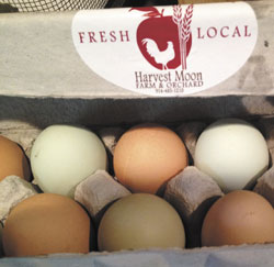 Harvest-Moon-eggs