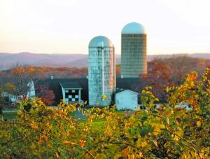 Hilltop Hanover Farm