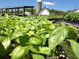 Hilltop Hanover Farm and Environmental Center